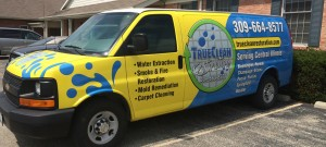 True Clean Services Bloomington IL