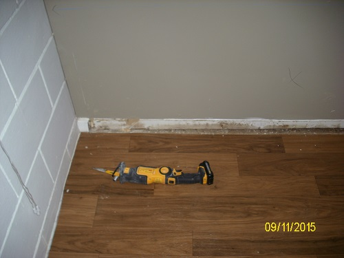Mold Removal True Clean Restoration